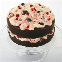 Celebration Chocolate Cake with Berry Icing
